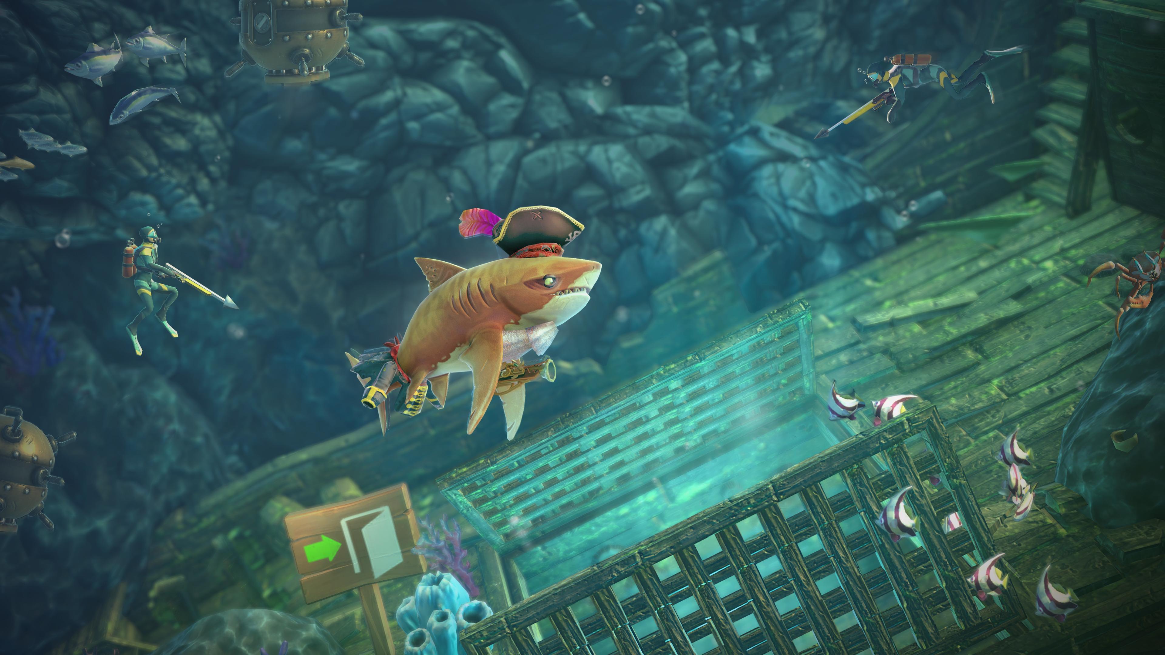 60 Gambar Ikan Hiu Goblin Gratis Terbaik