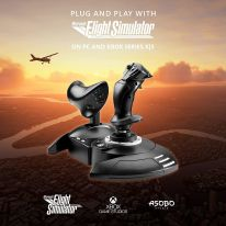 Thrustmaster T.Flight Hotas & T.Flight Rudder Pedals