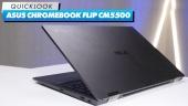 ASUS Chromebook Flip CM5500 - Quick Look